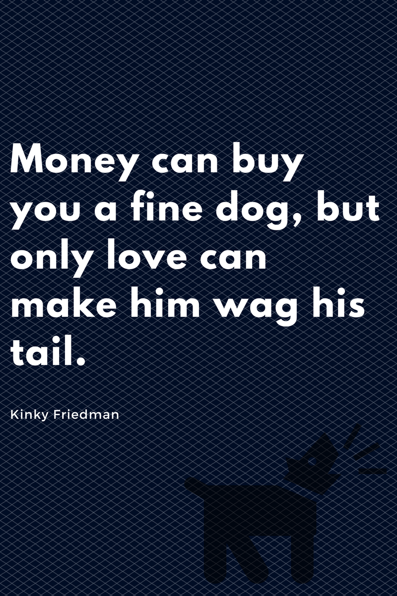 , Money can buy you a fine dog, but only love can make him wag his tail. Kinky Friedman, Blockchain Adviser for Inter-Governmental Organisation | Book Author | Investor | Board Member